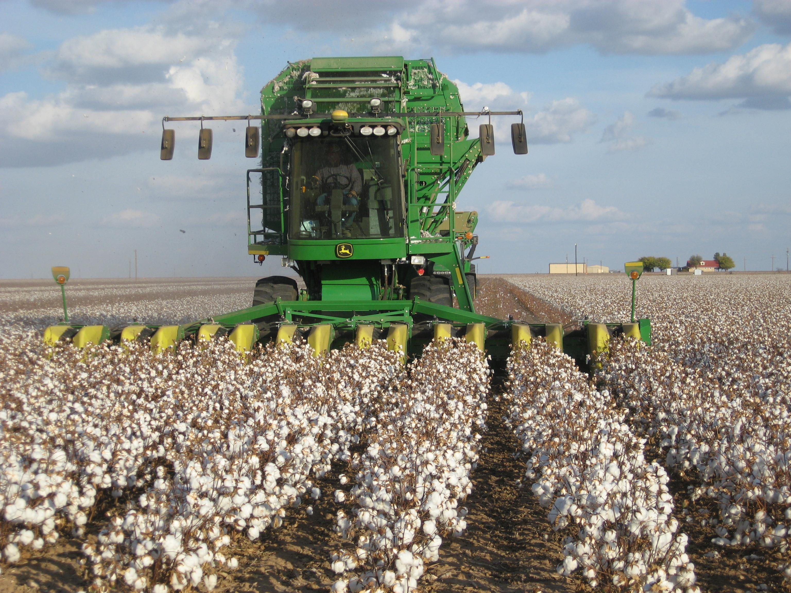 John_Deere_cotton_harvester_kv02.jpg