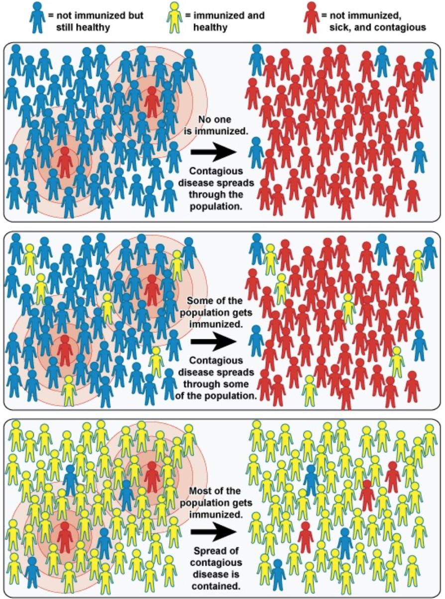 Herd Community Immunity