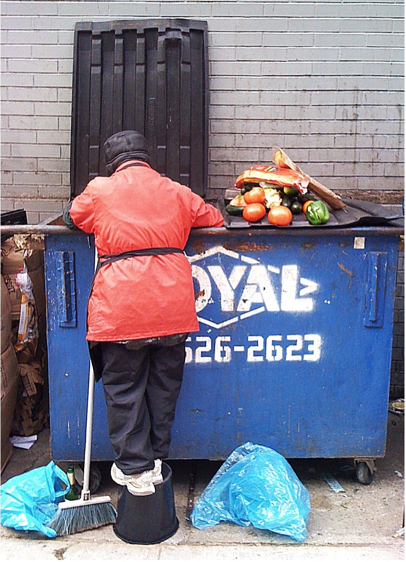 A man scavenges food from a dumpster